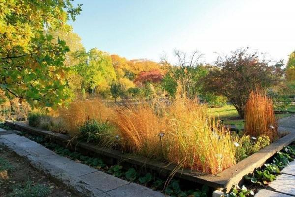 ogrody świata ogród botaniczny w Poznaniu