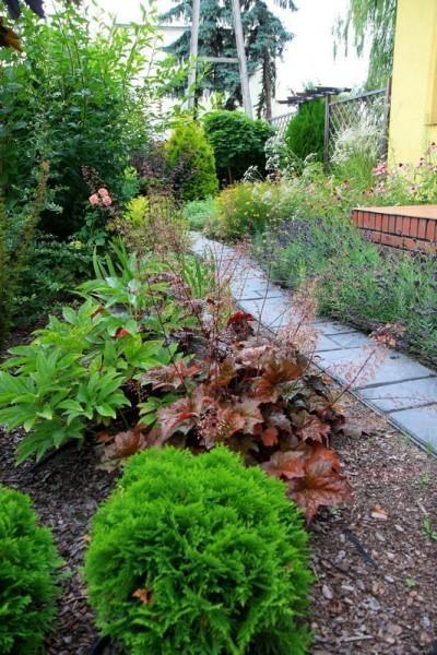 realizacje ogród w Luboniu galeria