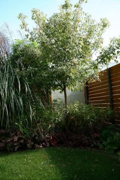realizacje ogród Dąbrówka galeria