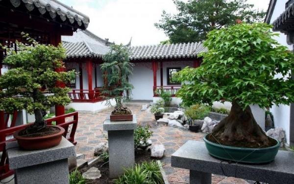 ogród botaniczny w Monteralu galeria