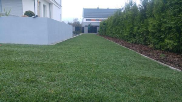 realizacja ogród Zakrzew galeria